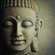 Buddha photo  lyn randle