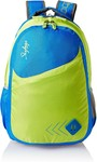 Skybags 25 Ltrs Blue Casual Backpack