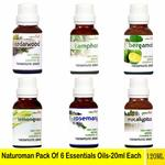 Naturoman Pack of 6 Essential oils @ Rs. only 450- MRP-2694 -20ml each Total-120ml