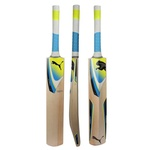 Deals on ..PUMA English Willow Cricket Bats