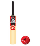 Buy G.A.S Tapto Cricket Bat For Rs.99