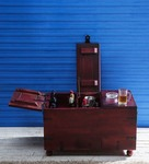 Didcot Bar Cabinet in Passion Mahogany Finish by Amberville