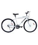 Hi-Bird Robust SS Mountain bike